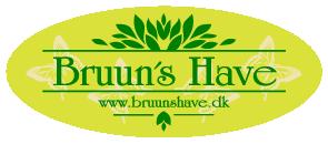 Bruun's Have